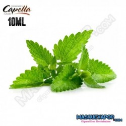 SPEARMINT CAPELLA FLAVOR DROPS
