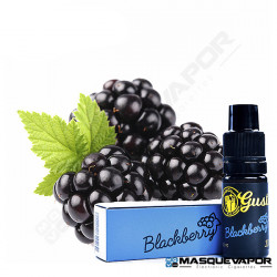 BLACKBERRY MIX&GO GUSTO CONCENTRATE CHEMNOVATIC 10ML