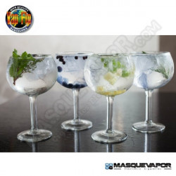 MASTER GINS CONCENTRATE VAP FIP